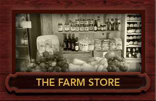 robert treat farm store milford ct