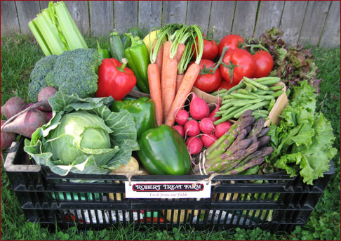 Robert Treat Farm Share Membership Basket