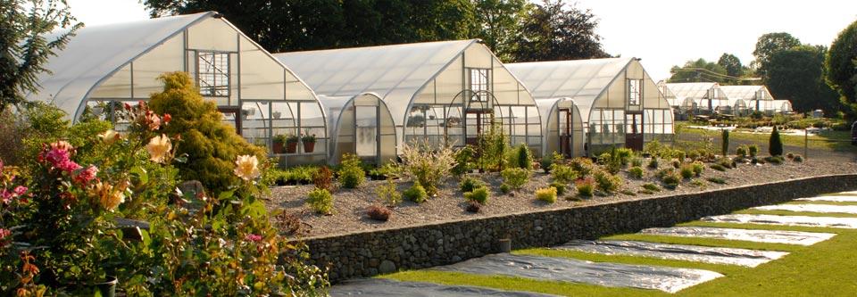 garden center 3